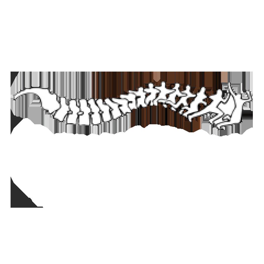 Back in Motion Logo